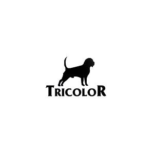 Karma dla Buldoga Francuskiego - Tricolor